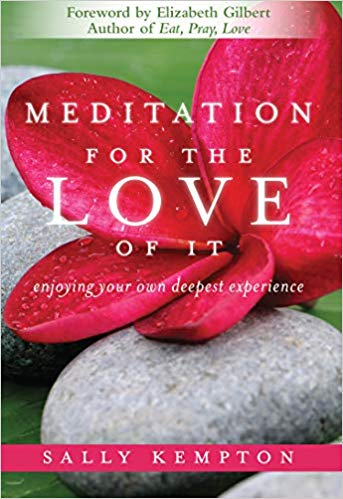 Meditation for the Love of it- Enjoying Your Own Deepest Experience by Sally Kempton
